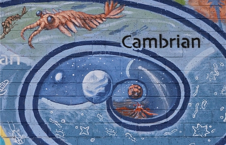 Cambrian Tom Ward Mural