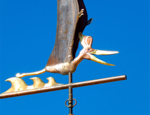 Pteranodon sternbergi Weather Vane